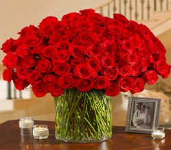 100 Premium Roses Vased from George Thomas Florist
