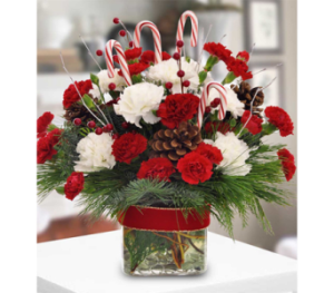 Candy Cane Celebration by George Thomas Florist