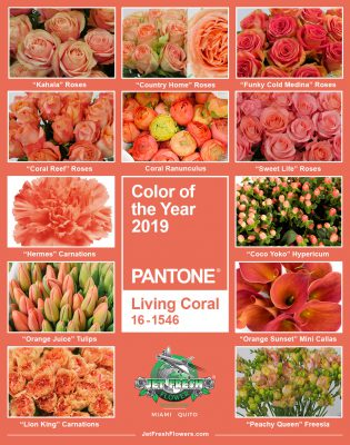 jf_pantone_colorOTYear_2019_LivingCoral_revised-315x400